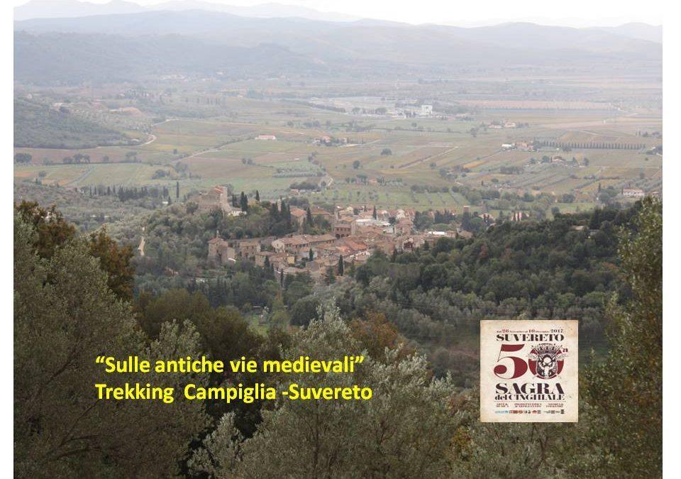 Trekking sulle antiche vie medievali